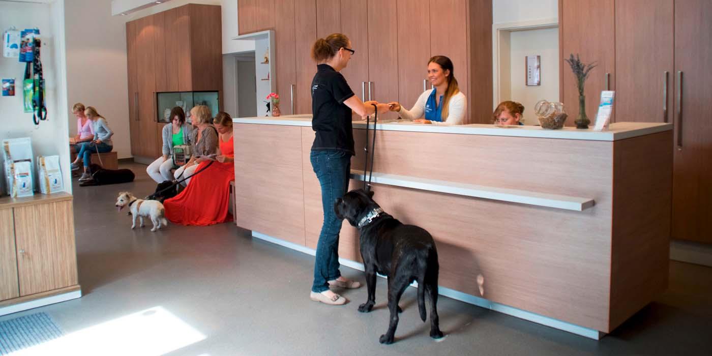 Empfang des Tiergesundheitszentrum