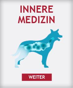 Schwerpunkt Innere Medizin